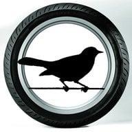 Super Blackbird