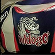 buldogo2