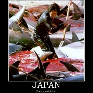 japan-japan-south-park-dolphin-whale-killing-demotivational-poster-1268797423.jpg