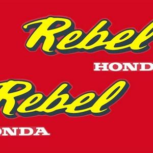 IMG_6049 Rebel logo L 300 dpi 18cm v4 19x29 gele letters (Small).jpg