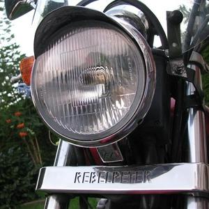 IMG_7657 rebelpeter logo 2 (Medium).JPG